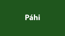 Páhi kép