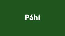 Páhi videó